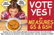 2016 Election Baanner ad for Yes on GS and GSH